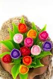 Tulipa colorida no flowerpod no saco imagens de stock royalty free