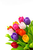 Tulipa colorida no vaso de flores no saco Fotos de Stock