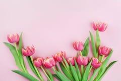 A tulipa cor-de-rosa floresce na opinião superior do fundo pastel no estilo da configuração do plano Cartão para a mulher ou o di Fotos de Stock