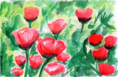 Tulipa da cor de água da ilustração Ilustração do Vetor