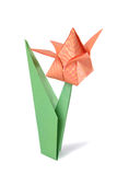 Tulipa do origâmi isolada sobre o branco Imagens de Stock
