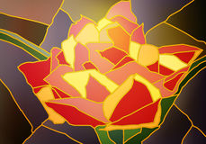 Tulipa do vitral Fotos de Stock
