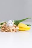Tulipa, ovo da páscoa no ninho na tabela Imagem de Stock Royalty Free