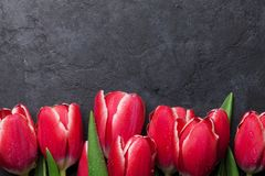 A tulipa vermelha floresce o ramalhete Imagens de Stock