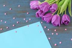 A tulipa violeta floresce no fundo de madeira azul com espaço da cópia e corações cor-de-rosa Foto de Stock