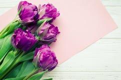 Tulipanów kwiatów tło ilustracji