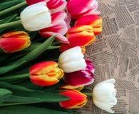 Tulipanów kwiatów wiązka na rocznik gazety tle Obrazy Stock