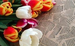 Tulipanów kwiatów wiązka na rocznik gazety tle Fotografia Royalty Free