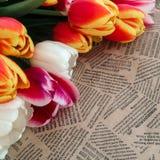Tulipanów kwiatów wiązka na rocznik gazety tle Zdjęcia Stock