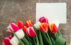 Tulipanów kwiatów wiązka na rocznik gazety tle Obrazy Royalty Free