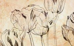 Tulipanów target410_1_ Obrazy Stock