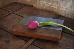 Tulipan i książka Zdjęcia Stock