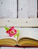 Tulipan i otwiera książkę Zdjęcie Stock