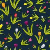 Tulipan Kwitnie Tapetowego Bezszwowego Deseniowego tło Fotografia Stock