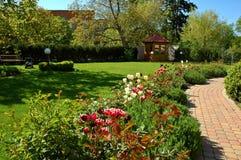 tulipan ogrodu Obraz Royalty Free