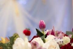Tulipan w ślubnym bukiecie Zdjęcie Royalty Free