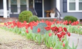 Tulipanes alrededor de la muestra de número de la casa de un hogar Imagenes de archivo