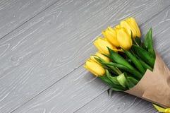 Tulipanes amarillos imagen de archivo libre de regalías