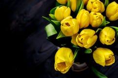Tulipanes amarillos Fotos de archivo
