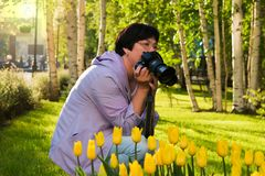 Tulipanes amarillos de las fotografías de mediana edad de la mujer fotos de archivo libres de regalías