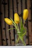 Tulipanes amarillos en el fondo de madera Imagen de archivo