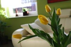 Tulipanes amarillos en el vector Imagen de archivo