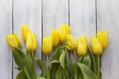 Tulipanes amarillos en la madera blanca Foto de archivo libre de regalías