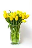 Tulipanes amarillos en un florero de los glas aislado Fotos de archivo libres de regalías