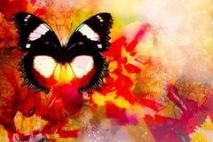 Tulipanes amarillos rojos con la mariposa y ornamentos y fondo suavemente borroso de la acuarela Foto de archivo libre de regalías