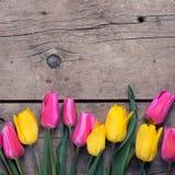 Tulipanes amarillos y rosados de la primavera en fondo de madera del vintage Imagenes de archivo