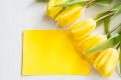 Tulipanes amarillos y tarjeta en blanco Foto de archivo libre de regalías