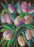 Tulipanes blancos Foto de archivo libre de regalías