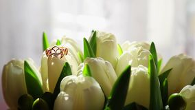 Tulipanes blancos como fondo Anillos de bodas en un ramo de tulipanes blancos Los rayos de la caída del sol en un manojo de blanc almacen de metraje de vídeo