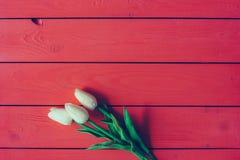 Tulipanes blancos en un fondo de madera rojo con el espacio para el texto imagen de archivo