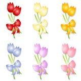 Tulipanes clasificados del resorte con los arqueamientos ilustración del vector