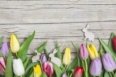 Tulipanes coloreados frescos en frente un fondo de madera con los conejitos de pascua Fotos de archivo libres de regalías