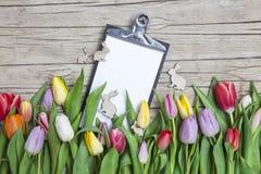 Tulipanes coloreados frescos en frente un fondo de madera con los conejitos de pascua Imagen de archivo