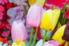 Tulipanes coloridos en fondo de la flor Imagen de archivo libre de regalías
