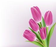 Tulipanes coloridos realistas en fondo ilustración del vector