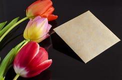 Tulipanes con la tarjeta de felicitación Fotografía de archivo libre de regalías