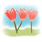 Tulipanes de la acuarela stock de ilustración