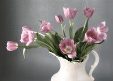Tulipanes de la mañana Imagen de archivo libre de regalías