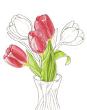 Tulipanes de la primavera en un florero Fotografía de archivo libre de regalías