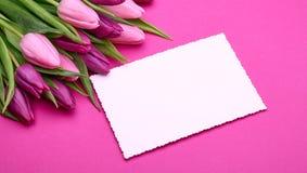 Tulipanes de la primavera y tarjeta de felicitación fotos de archivo