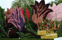 Tulipanes de las flores Coche adornado con las flores, desfile de la flor fotografía de archivo libre de regalías