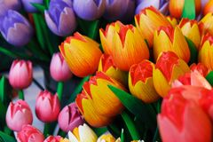 Tulipanes de madera coloridos Imágenes de archivo libres de regalías