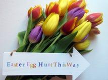Tulipanes de Pascua Fotos de archivo
