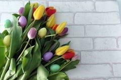 Tulipanes de Pascua Imagen de archivo libre de regalías