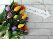 Tulipanes de Pascua Fotografía de archivo libre de regalías