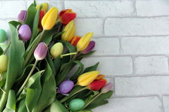 Tulipanes de Pascua Imágenes de archivo libres de regalías